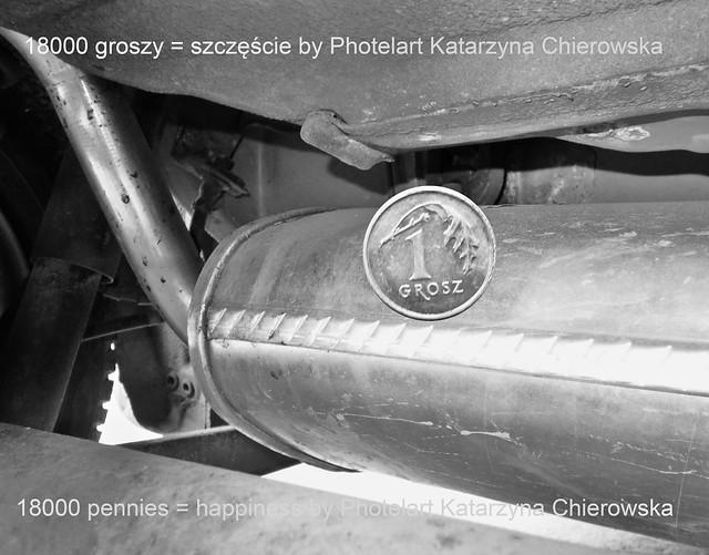 """F/M Festiwal 2015: Photelart Katarzyna Chierowska """"Sztuka żebrania"""""""