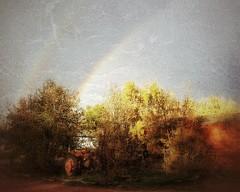 Autumn Double Rainbow