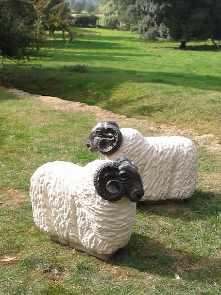 Sheep. Bath stone with cast bronze.