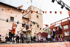 Fira Sant Antoni Muro 2017-53