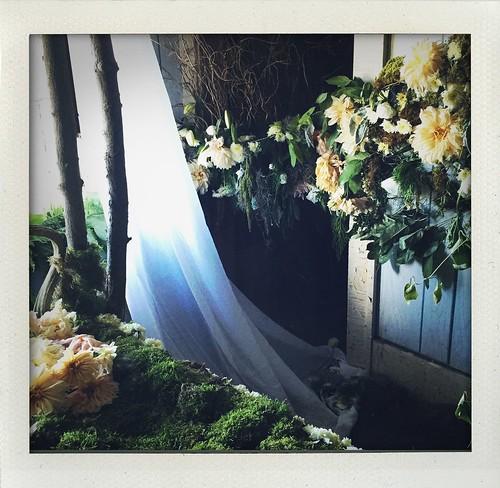 #FlowerHouseDetroit