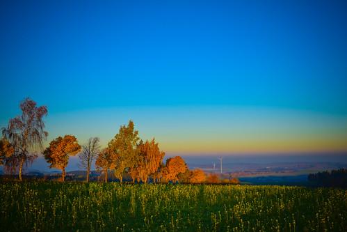 Herbst im Erzgebirge
