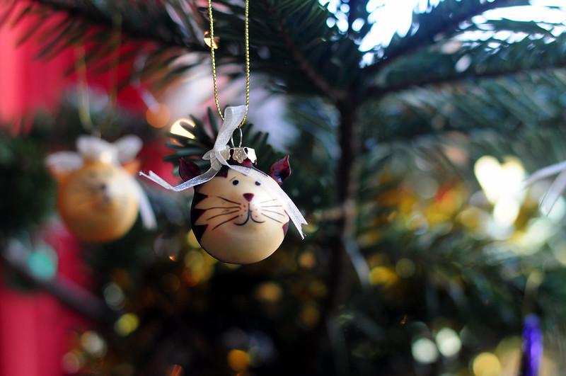 christmas-2015-rottenotter-rotten-otter-blog 4