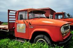 Farmer Driscoll's red truck