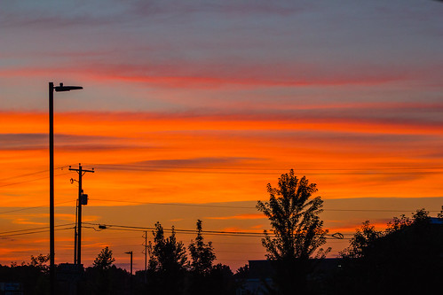 trees sunset red sky orange black beautiful lines yellow electric fire pretty power view joshua canyon idaho boise powerlines wires snakeriver electricity inferno fiery nampa caldwell inthesky treasurevalley joshuaww