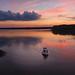 Fishing by Denise Worden