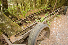 Relics of the forestry era