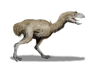 old-dinosaur014