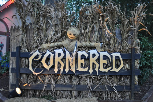 Busch gardens williamsburg unearths its howl o scream for 2015 - Busch gardens williamsburg halloween ...