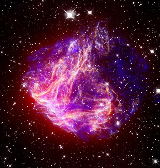 Stellar Debris in the Large Magellanic Cloud