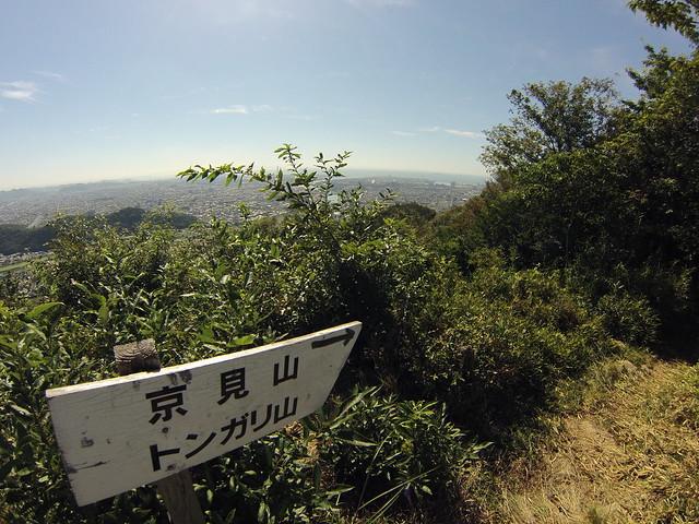 京見山・毛無山 (83)