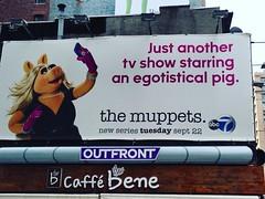 Brilliant. #advertising