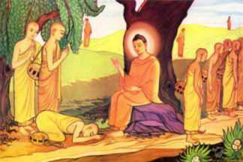 Nghiệp dẫn chúng sinh đi trong luân hồi sống chết