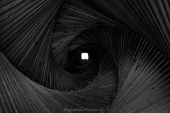 spirale, tunnel spaziotemporale artesella