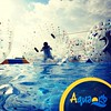 Mas diversión con #aquaorb #inflables #inflablesacuaticos #futbol #soccer #zorbing #acuatico #diversion #funny #negocio #eventos #fsl #follow #dailypic #fun #follow #like4like #funny
