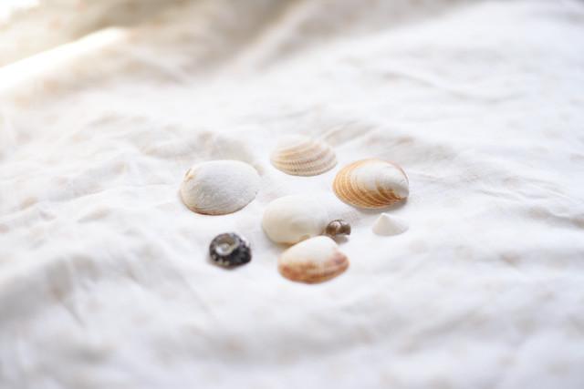 shell 2015-09-22 1009