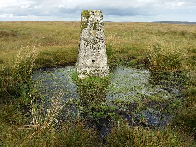 Trig Point on Lee Moor