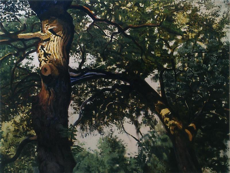 Chêne vert, Nébian, huile sur toile, 97 x 130 cm, 2005