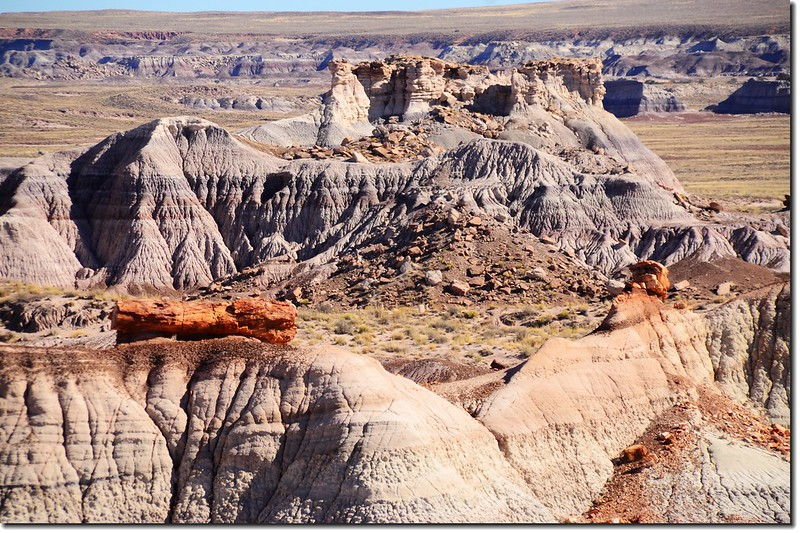 Blue Mesa Trail, Petrified Forest National Park 1