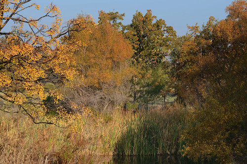 california autumn wild usa west color fall water colors landscape us pond colorful warm outdoor western wetlands marsh tones