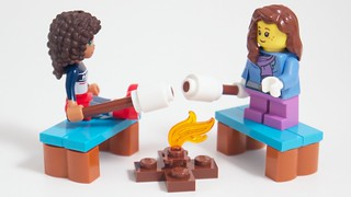 LEGO Friends+City Advent 2015 Day 21