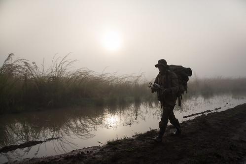 park mist elephant reflection nature water fog sunrise dawn nationalpark ranger outdoor ngc patrol drc poaching rdc gramaba