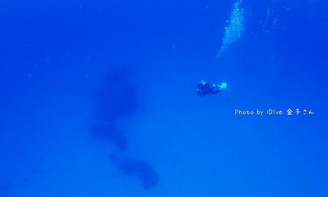 青い海と白い砂そして、みちゃこ☆