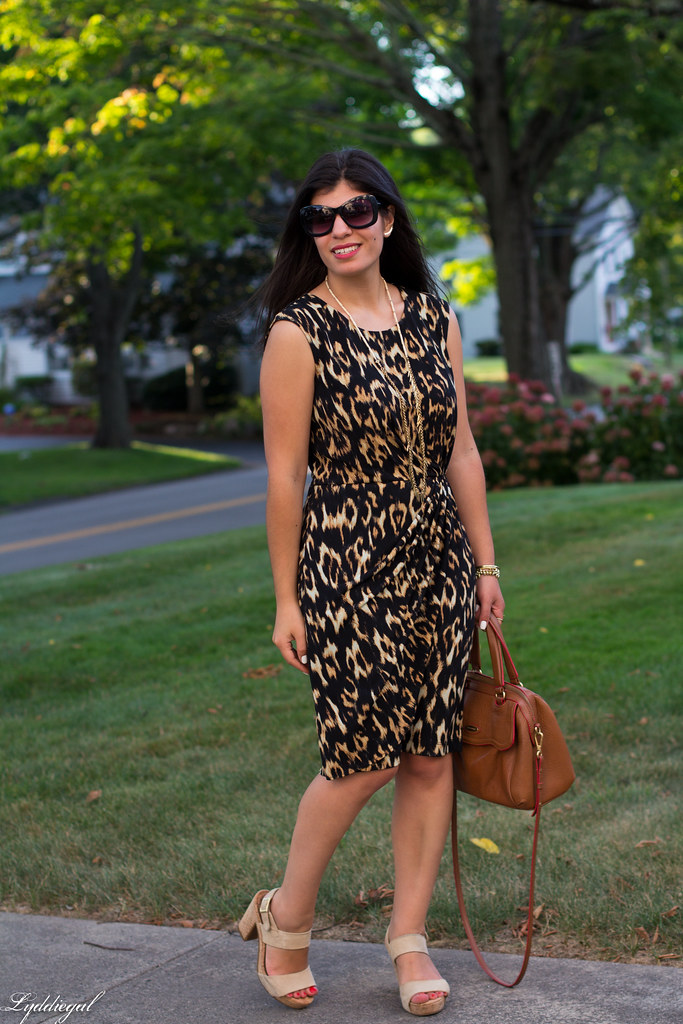 leopard dress, brown bag, platform sandals.jpg