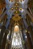 Inside the Sagrada Familia, Barcelona Spain by I like green