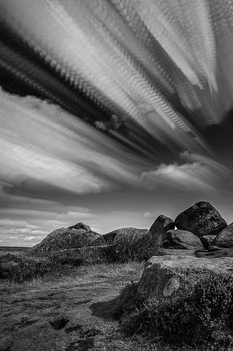 Windy days (Black and white)