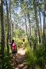 The Aspen Path