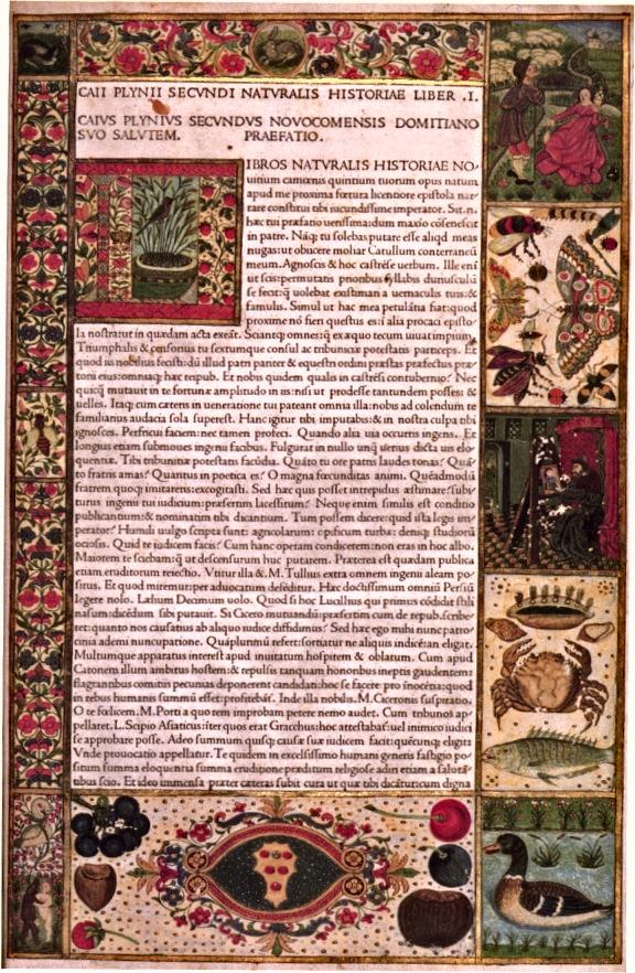 Pliny-1472