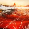 Sunset Walk by B. Braman