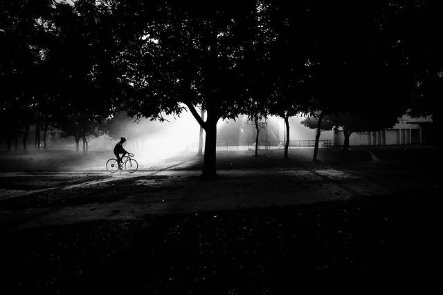 Cyclist 2015