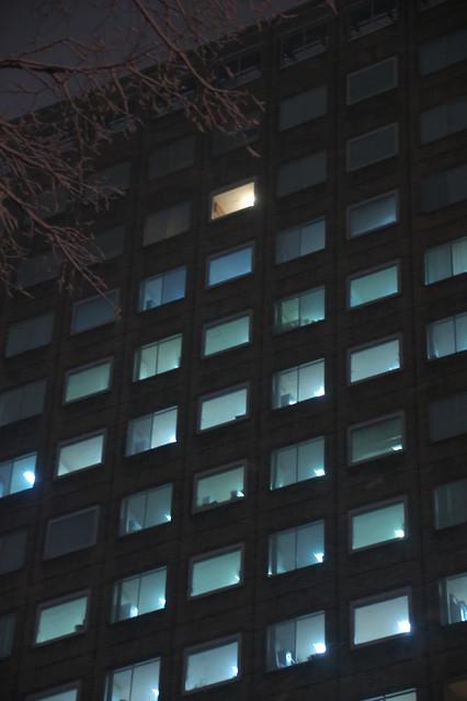 札幌市役所本庁舎 クリスマスツリー_09