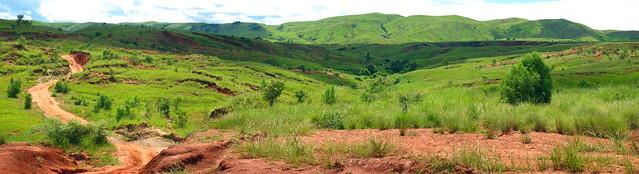 Madagascar2 - 156