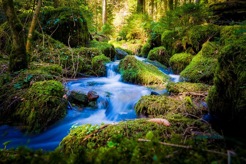 A River Flows Through It