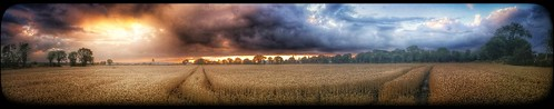 beautiful beauty clouds amazing scenery colours view outdoor panoramic crop fields amateurs tworoads