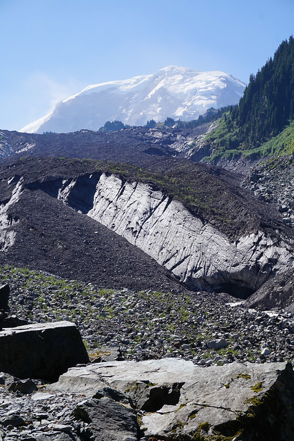 Rainier and Carbon Glacier