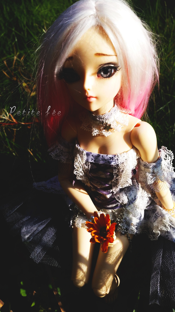 NEW DOLL: LDOLL ! ❤ Mes petites bouilles ~ NEWP.4 - Page 2 22384096422_af68645fd7_o