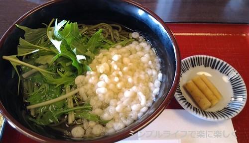 平等院昼食、茶蕎麦