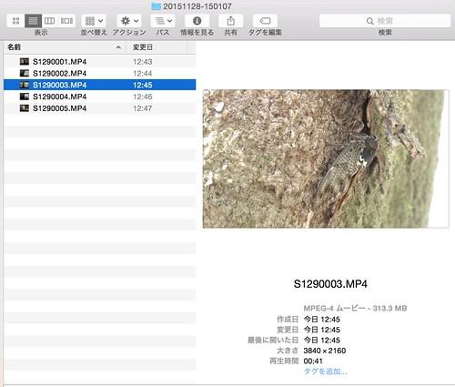 file create date