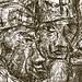 "DSC_5429. grabados en zink, serie: ""desmelaos""* by THE ART OF STEFAN KRIKL"