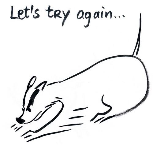 Tuesday #badger #badgerlog