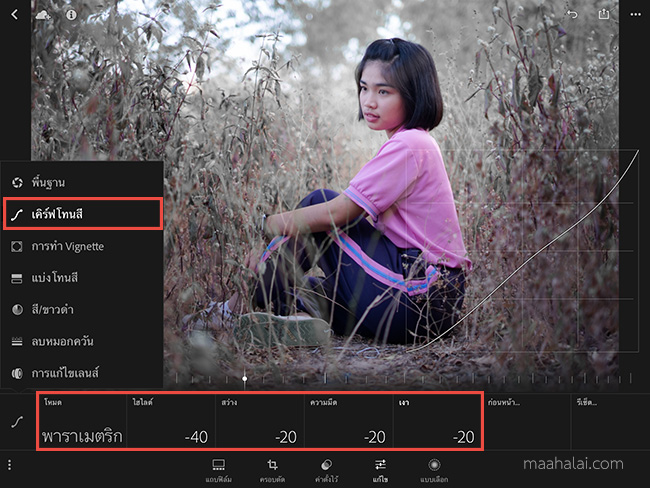 Lightroom Snow Tone V3