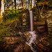The only thing I can hear is the sound of falling water. by Ian Emerson