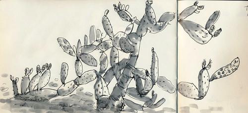Sketchbook #91: Cactus