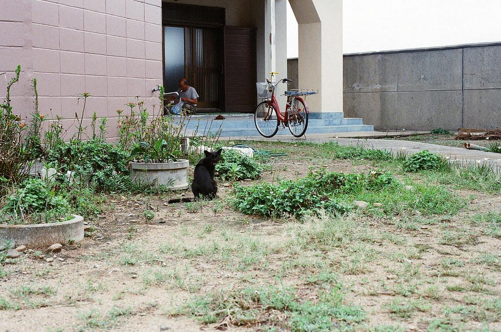 貓 相島 Ainoshima, Fukuoka 2015/09/02 貓,一直跟在那阿伯後面喵喵叫。  Nikon FM2 / 50mm Kodak UltraMax ISO400 Photo by Toomore