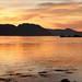 Gyldent kveldslys -|- Evening glow by erlingsi