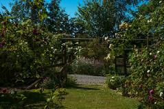 Le Jardin de Jumaju